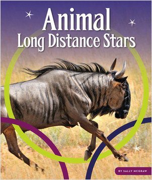 Cover: Animal Long Distance Stars