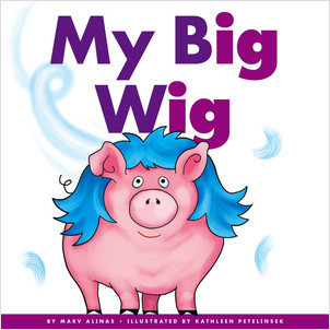 Cover: My Big Wig