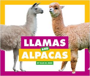 Cover: Llamas and Alpacas