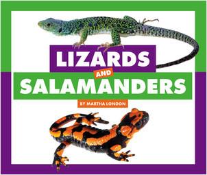 Cover: Lizards and Salamanders
