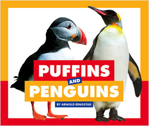 Cover: Puffins and Penguins