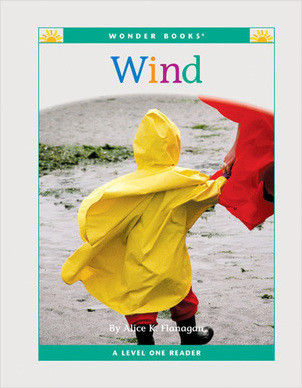 Cover: Wind