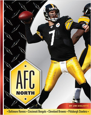 Cover: AFC North
