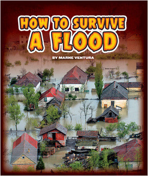 Cover: How to Survive a Flood