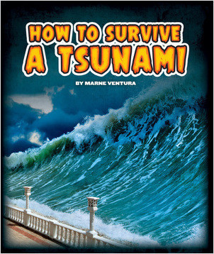 Cover: How to Survive a Tsunami