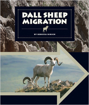 Cover: Dall Sheep Migration