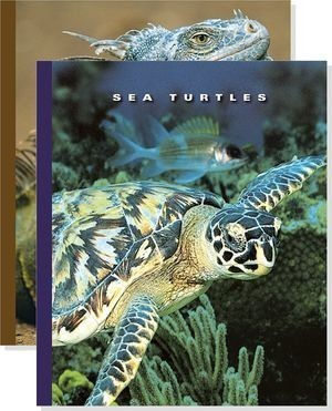 Cover: The World of Reptiles