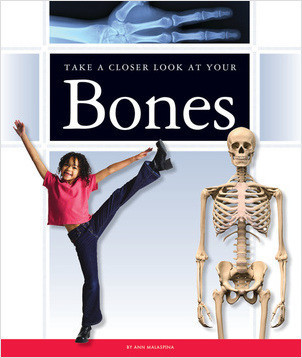 Cover: Take a Closer Look at Your Bones