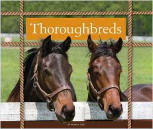 Cover: Thoroughbreds