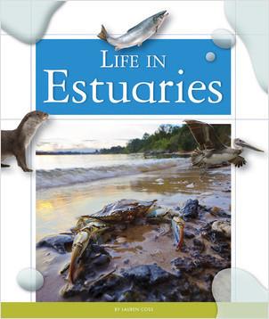 Cover: Life in Estuaries