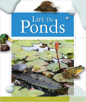 Cover: Life in Ponds