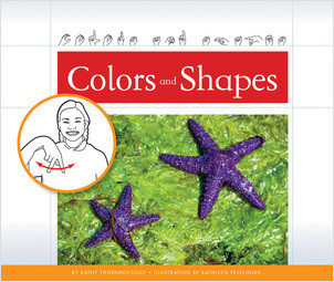 Cover: Colors and Shapes