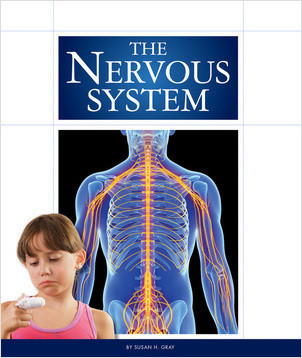 Cover: The Nervous System
