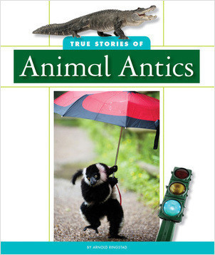 Cover: True Stories of Animal Antics