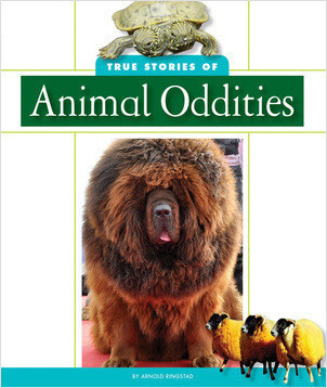 Cover: True Stories of Animal Oddities