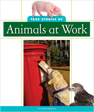Cover: True Stories of Animals at Work