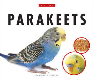 Cover: Parakeets