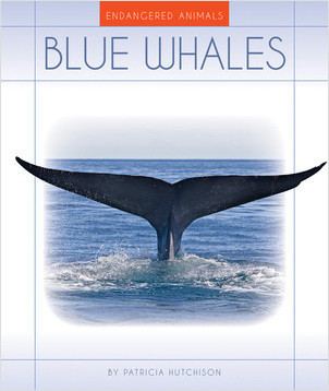 Cover: Blue Whales