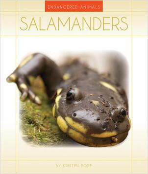 Cover: Salamanders