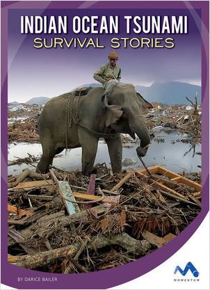 Cover: Indian Ocean Tsunami Survival Stories