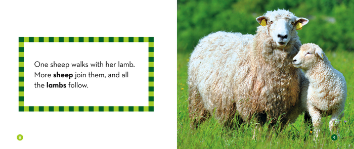 Cows, Horses, and Sheep: Teaching Plural Words - The Child ...