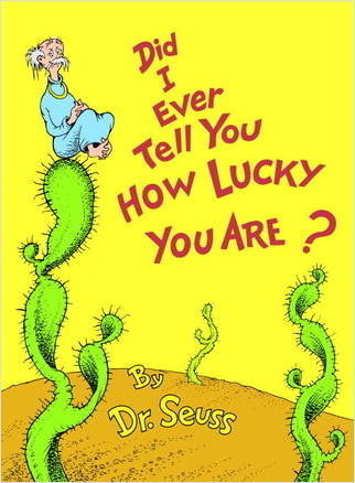 Cover: Did I Ever Tell You How Lucky You Are?