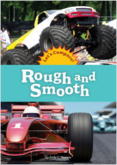 Cover: Rough and Smooth
