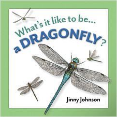 Cover: A Dragonfly?