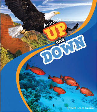 Cover: Animals Up and Down