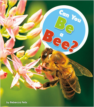 Cover: Can You Be a Bee?