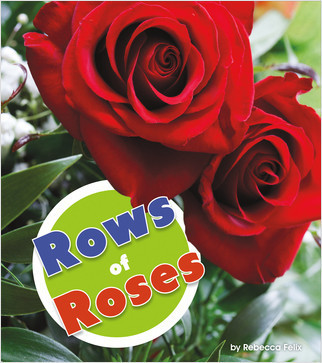 Cover: Rows of Roses