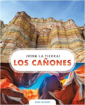 Cover: Los cañones
