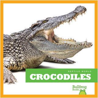 Cover: Crocodiles