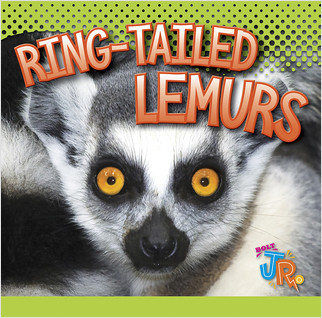 Cover: Awesome Animal Lives: RingTailed Lemurs