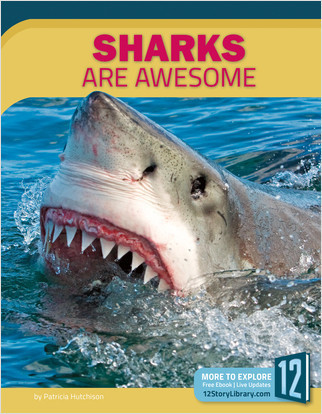 Cover: Sharks Are Awesome