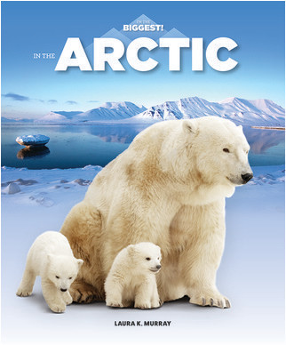 Cover: In the Arctic