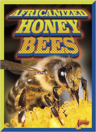 Cover: Africanized Honeybees