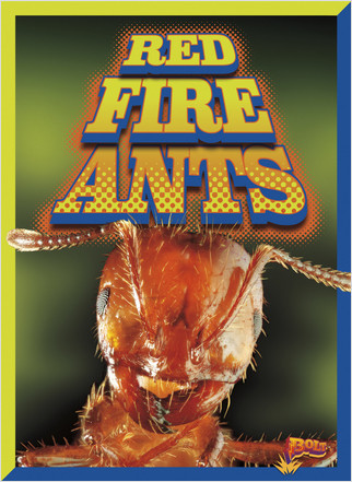 Cover: Red Fire Ants