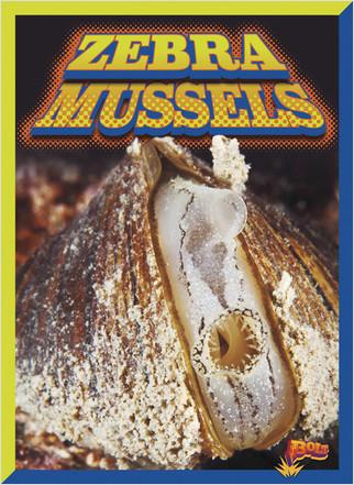 Cover: Zebra Mussels