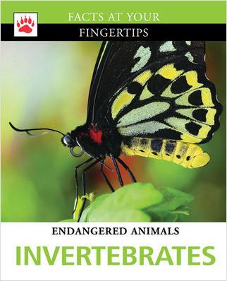 Cover: Invertebrates