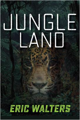 Cover: Jungle Land