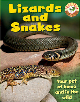 Cover: Lizards and Snakes