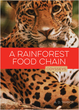 Cover: A Rainforest Food Chain