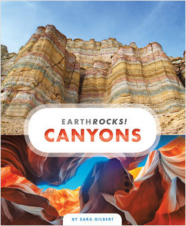 Cover: Earth Rocks!