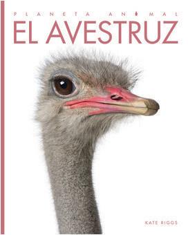 Cover: El avestruz