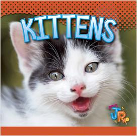 Cover: Kittens