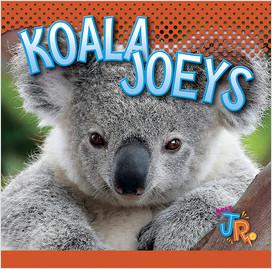 Cover: Koala Joeys