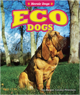 Cover: Heroic Dogs