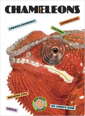 Cover: X-Books: Reptiles