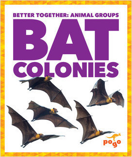 Cover: Better Together: Animal Groups